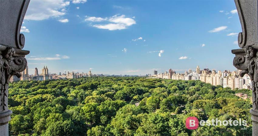 perfect location in New York - The Ritz-Carlton, Central Park