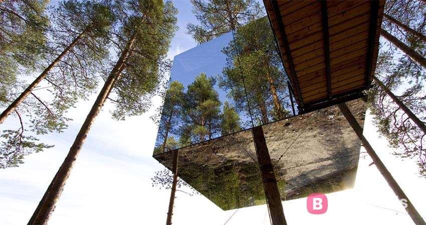 unusual hotel in Sweden - Tree Hotel